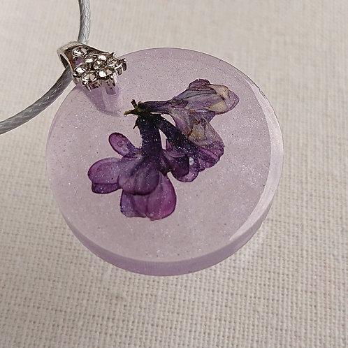 Violet 10