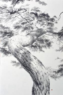 我在樹下看著你_ 140x93.2cm_ 2018_宋勝浩