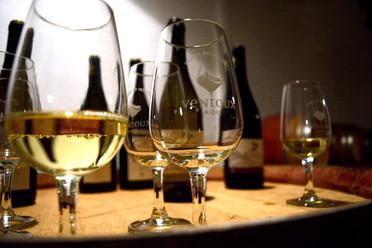 Empreinte digitale pour les vins AOC Ventoux