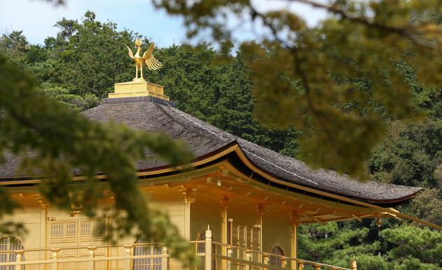 Kyoto - Foto Fred Uehara - SP24h (21).jp
