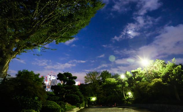 Tóquio_-_Foto_Fred_Uehara_-_SP24h_(19).j
