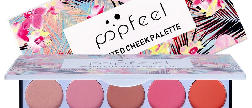 10 Color Matte Blusher Palette Blush Powder