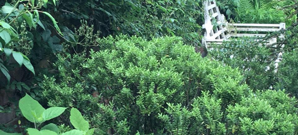 garden_banner_image.cb51391ddbe47ad0bd7e