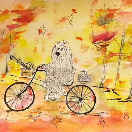 Autumn colors #bobtail #oldenglishsheepd