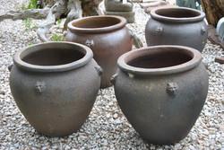 monkey pots