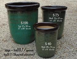 mp - tallU green