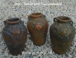 inp - turtle pot
