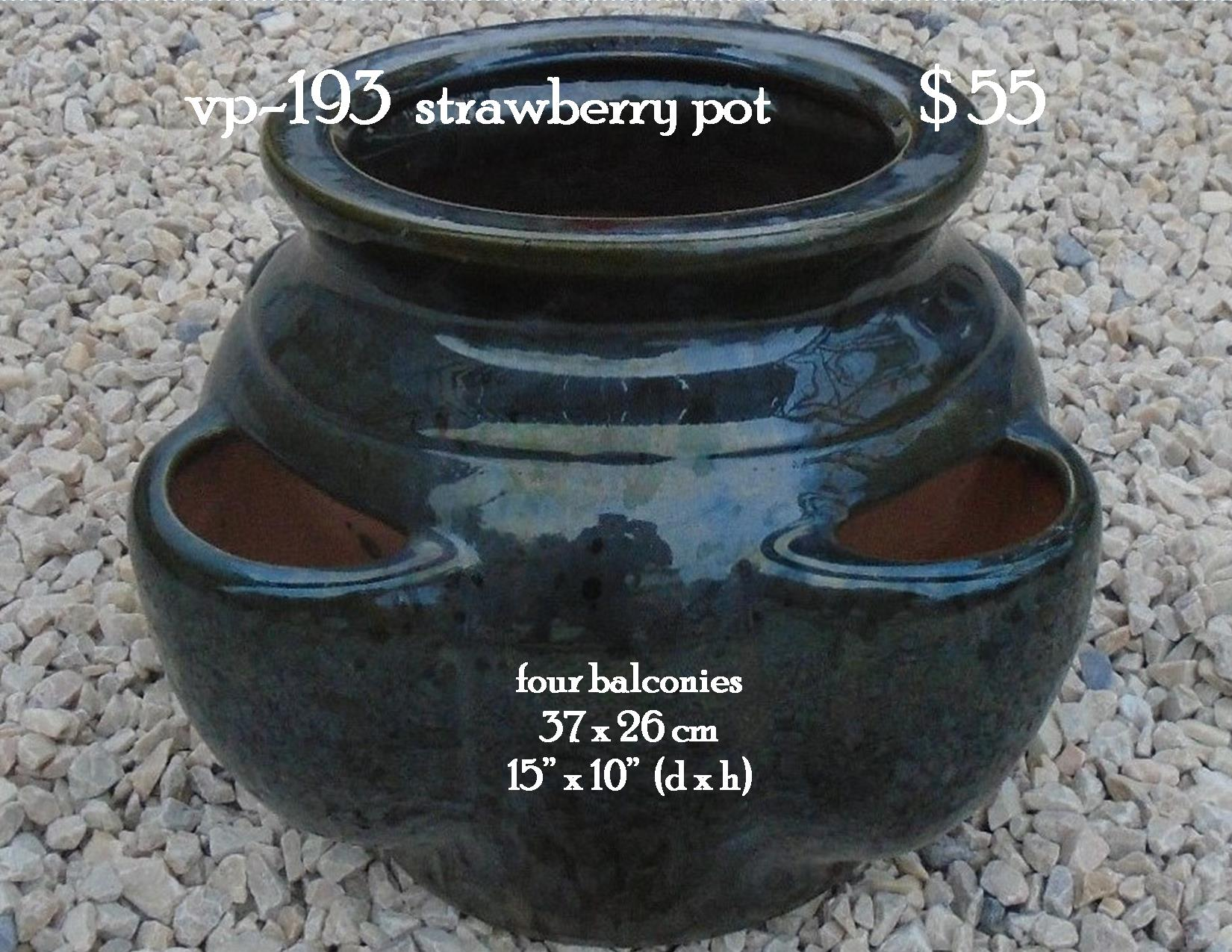 vp-193  strawberry pot
