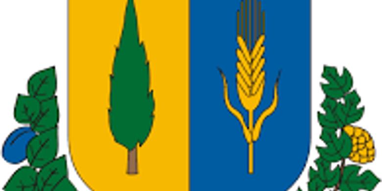 Ecser SE - Újszilvás KSE (ZÁRT KAPUS)