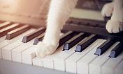 ピアノ_猫1.jpg