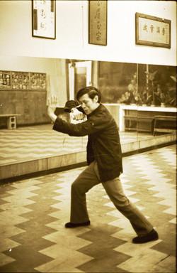 Bak Mei Kung Fu Grandmaster Yip
