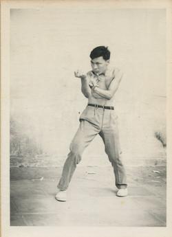 Bak Mei Kung Fu Wilkie Wu