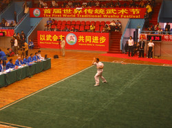 Bak Mei Kung Fu China Competition