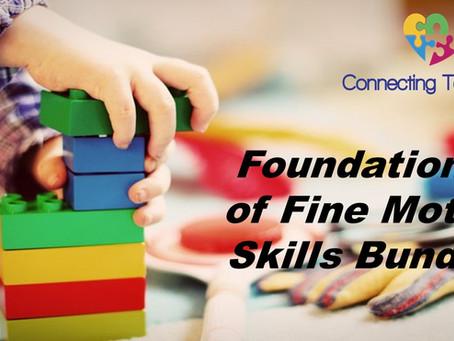 Foundations of Fine Motor Skills