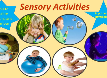 Sensory Processing Summary