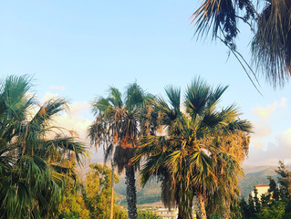Tageb(r)uch aus Kreta