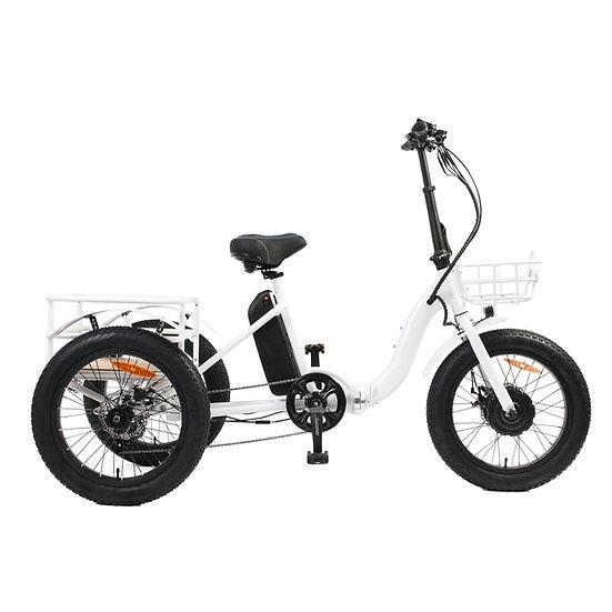 EUNORAU NEW-TRIKE 48V500W 20'' Step-Through Fat Tire Folding Electric Tricycle