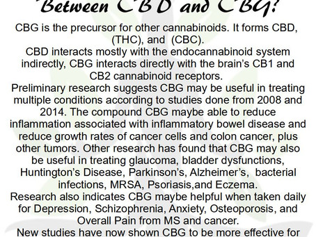 CBD vs. CBG what is the difference