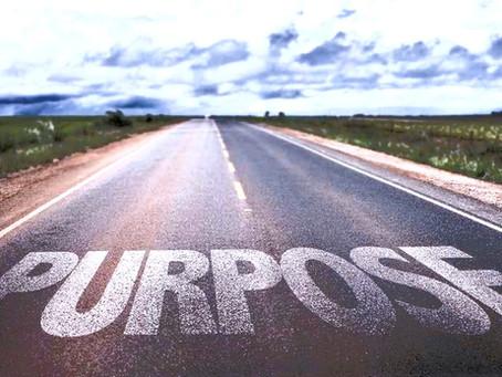 Pivot to Purpose
