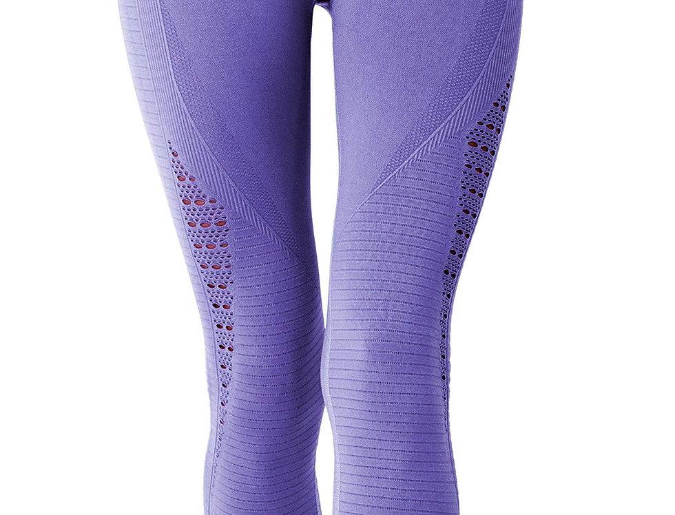 Mesh Seamless Legging With Ribbing Detail - Purple
