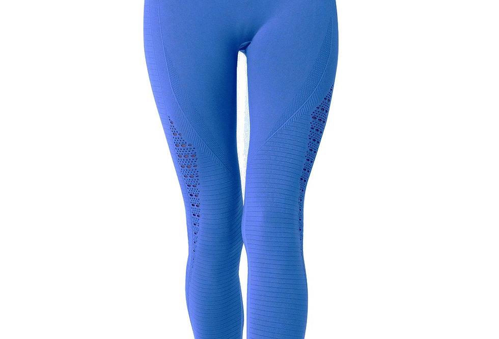 Mesh Seamless Legging With Ribbing Detail - Blue