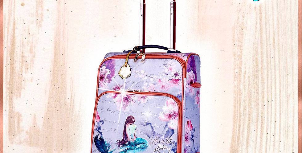 Princess Mera Carry on Luggage With Spinner Wheels