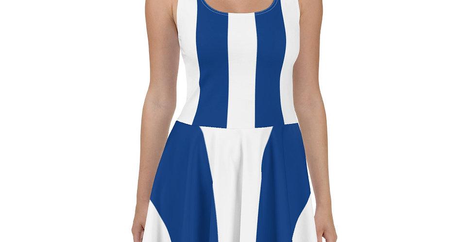 Blue & White Skater Dress