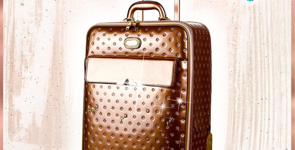Meteor Sky Underseat Travel Luggage With Spinners
