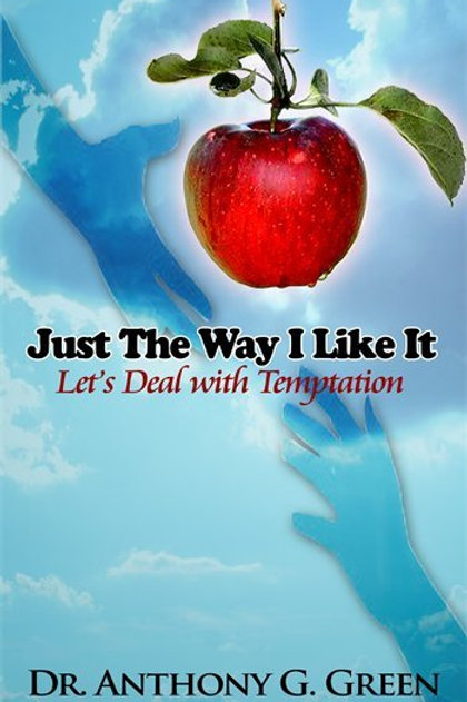 Just The Way I Like It - Temptation