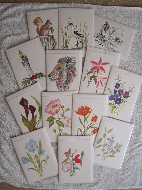 Cards - £2.75 each or 4 for £10