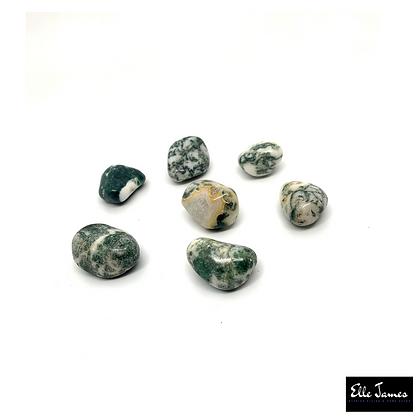 Tree Agate Crystal