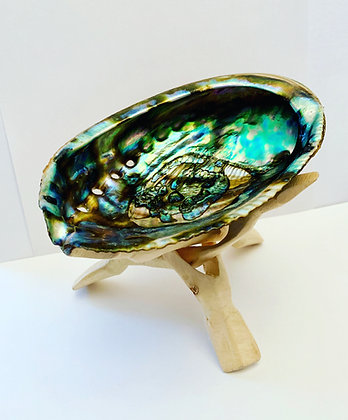 Large Abalone Shell + Folding Carved Wood Stand