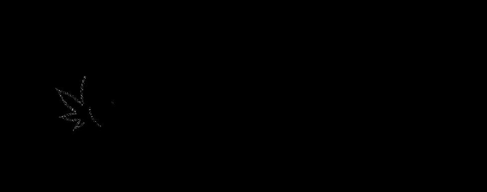 black company logo