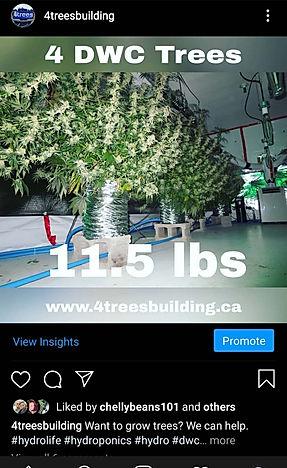 Instagram post 1.jpg