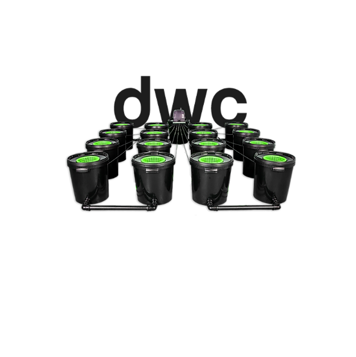 DWC hydroponic buckets.png