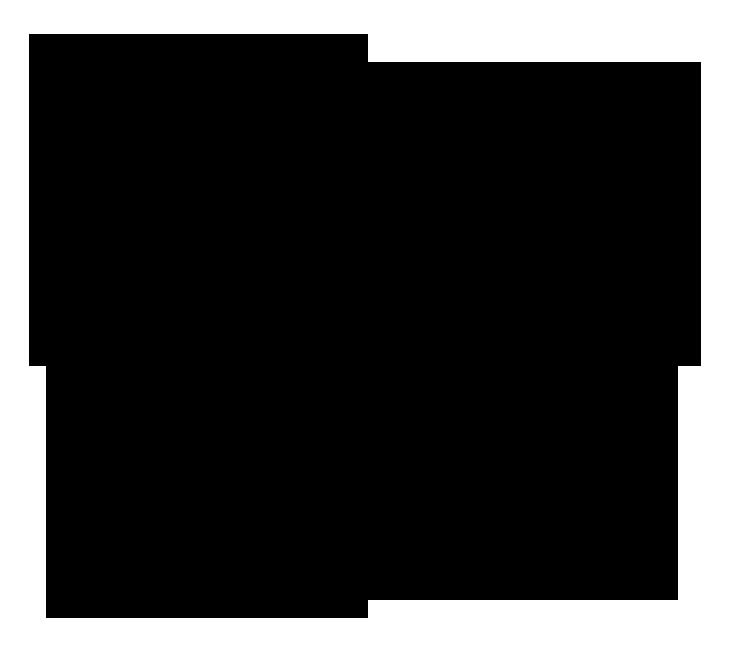 black compay logo