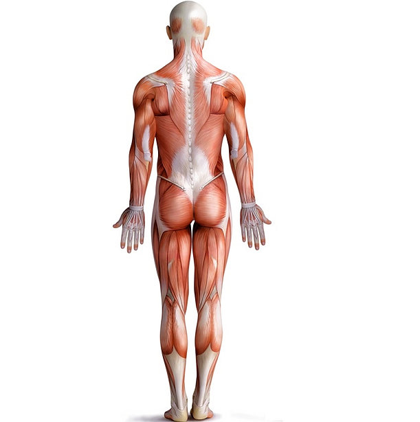 Stem Cell Injection Therapy Kingston Orthopaedic Pain