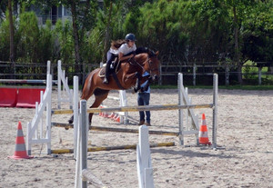Obstacle equilogos