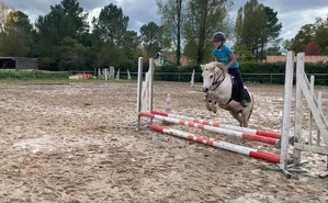 prepa concours poney