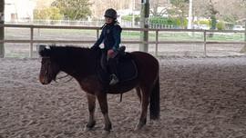 equitati bordeaux equilogos poney club p