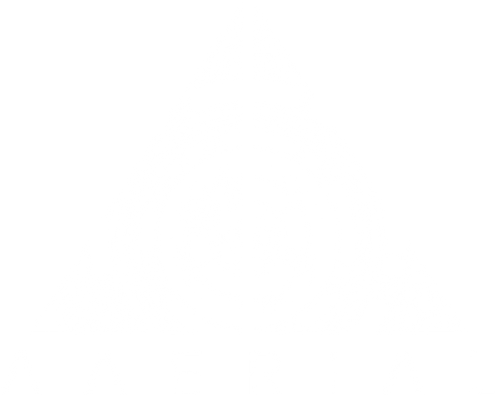 Aaerial-Logo_WHITE.png