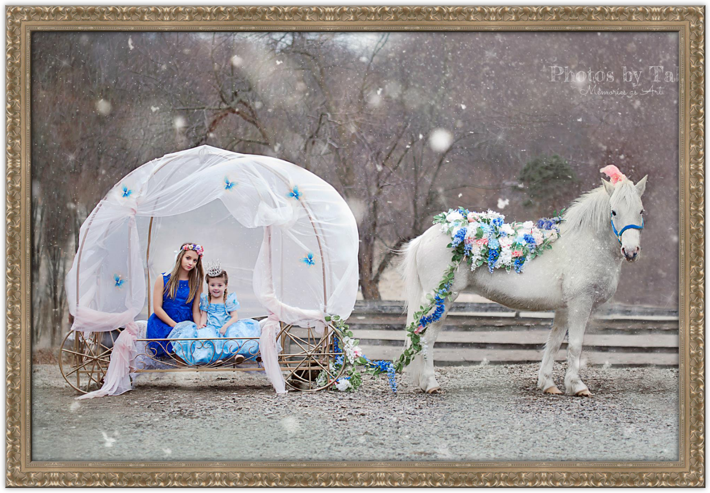 Horse and Carriage Sessions