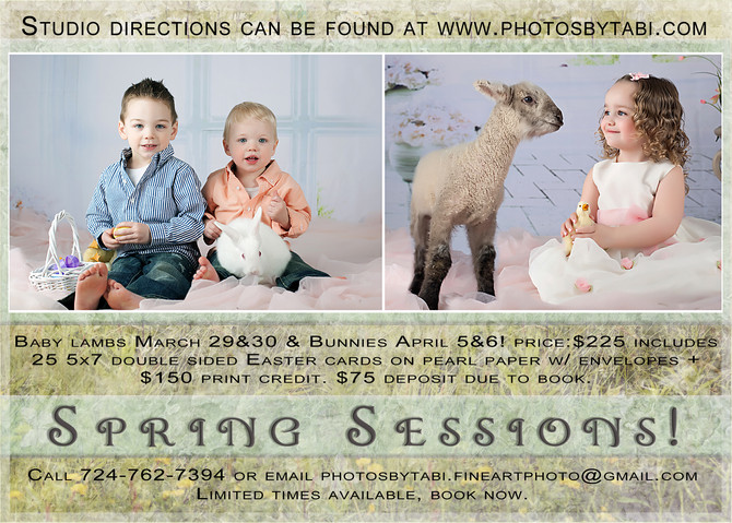 Easter Pictures with live animals!  Greensburg, Pa Photographer - (baby bunnies and lambs)