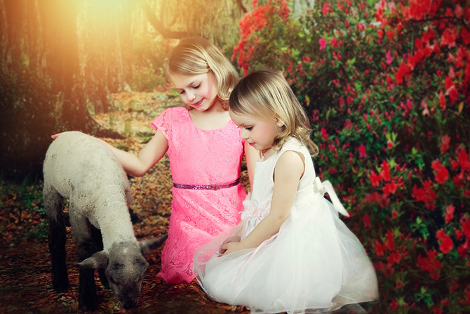 2015 Easter sessions with live animals!