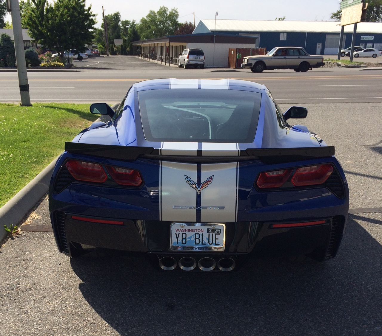 CORVETTE STRIPES REAR.jpg