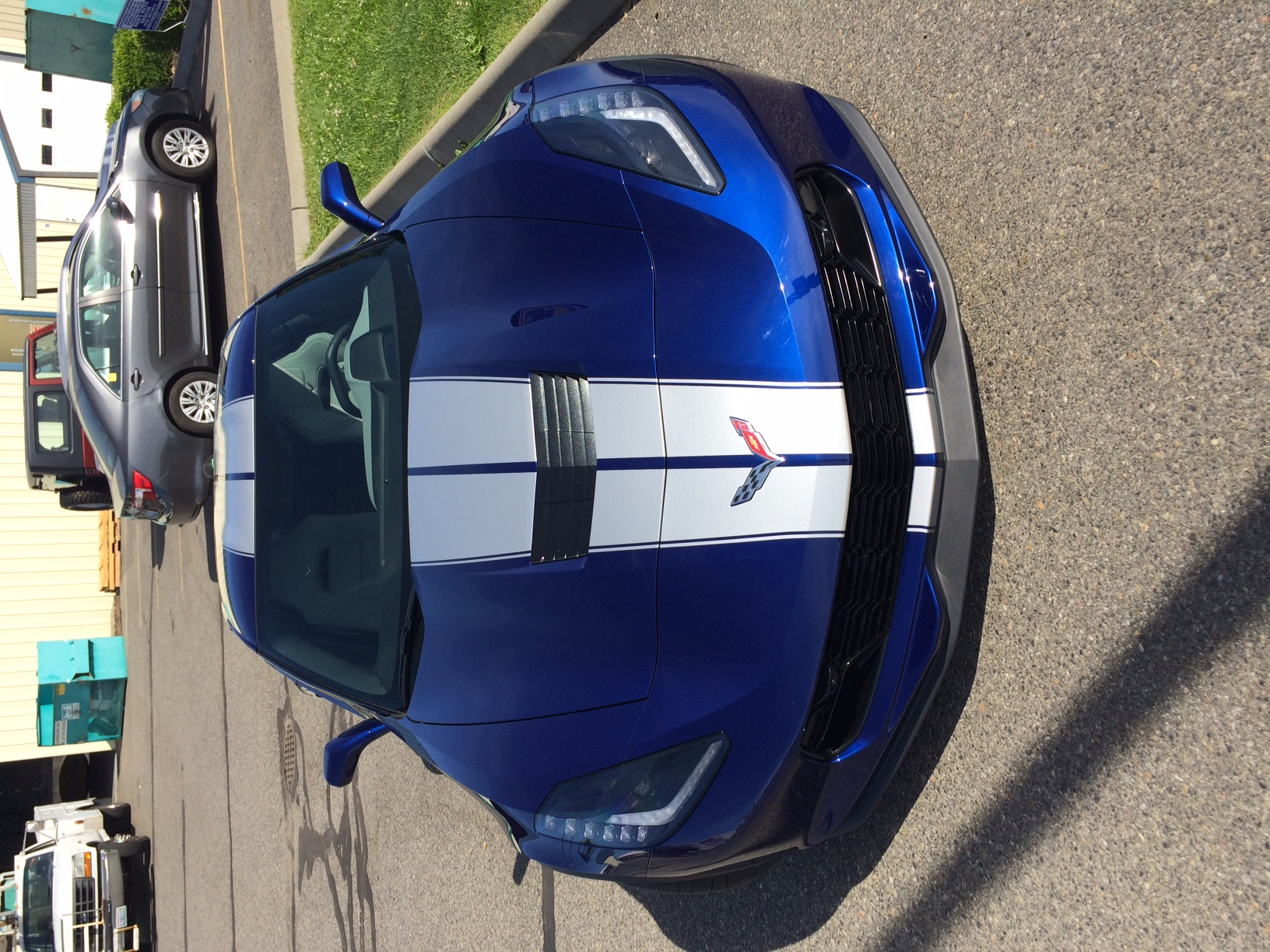 CORVETTE STRIPES HOOD.JPG