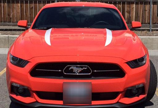 Mustang GT 50 Years (3).JPG