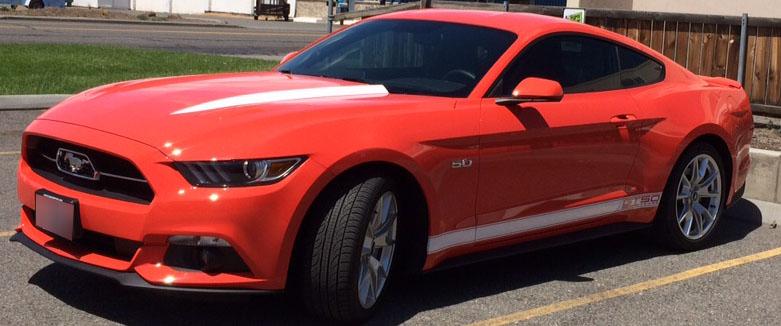 Mustang GT 50 Years (2).JPG