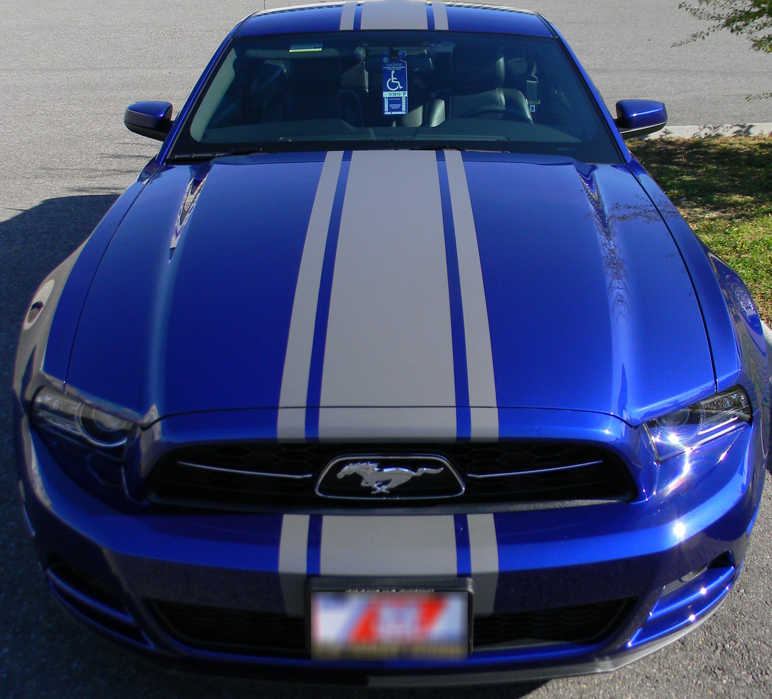 Mustang Stripes.JPG