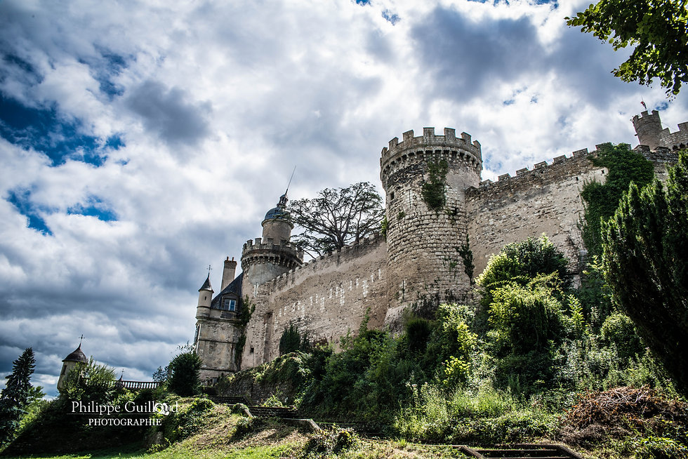 Vue du Château de Veauce et des murailles depuis le parc.
